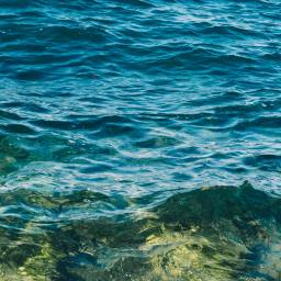 Ocean Health – Our Responsibility